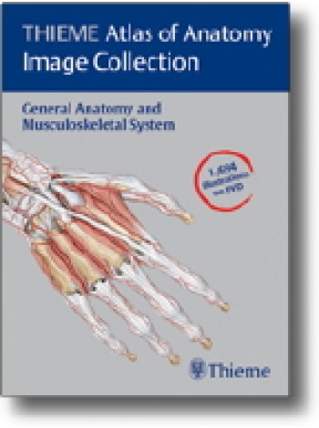 THIEME Atlas of Anatomy Image Collection--General Anatomy and Musculoskeletal System