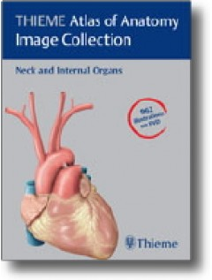 THIEME Atlas of Anatomy Image Collection--Neck and Internal Organs