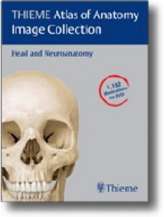 THIEME Atlas of Anatomy Image Collection--Head and Neuroanatomy