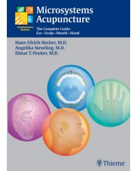 Microsystems Acupuncture