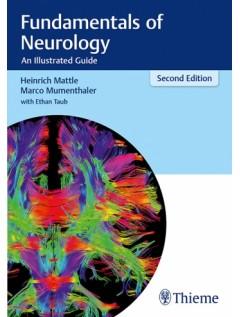Fundamentals of Neurology