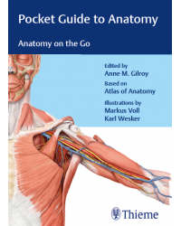 Pocket Guide to Anatomy